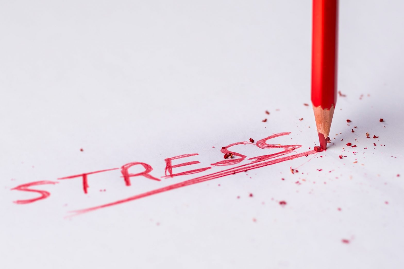 What does stress have to do with weight loss?