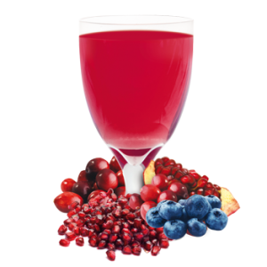 Ideal Protein Product - Blueberry, Cranberry and Pomegranate Drink Mix